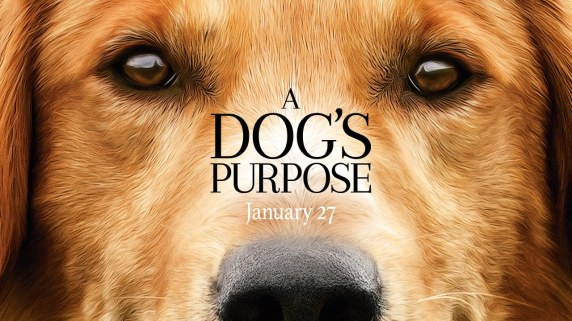dogs purpose.jpg